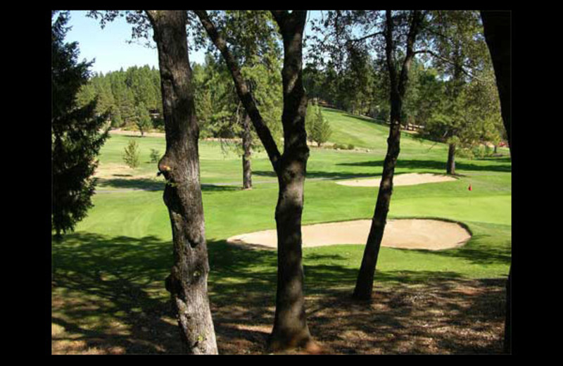 Golf course at Alta Sierra Village Inn.