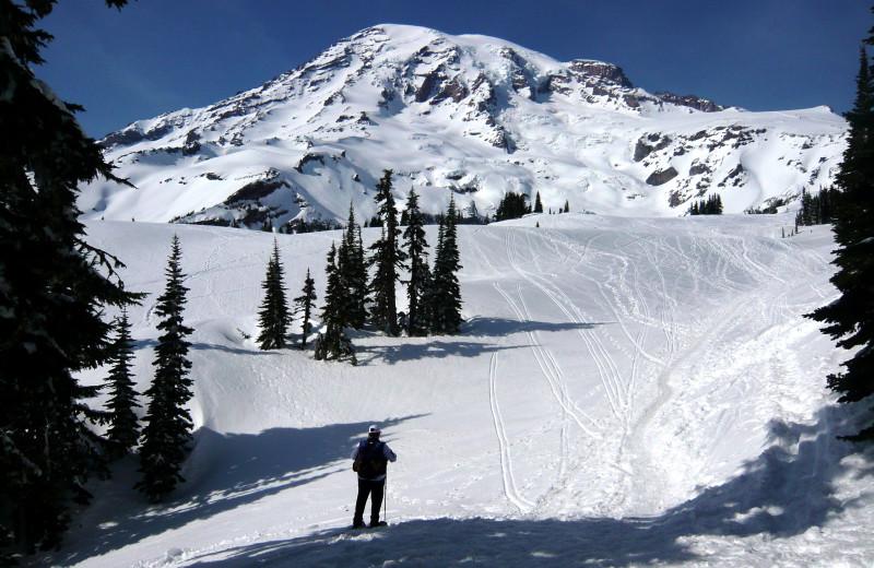 Skiing near Jasmer's Rainier Cabins & Fireplace Rooms.