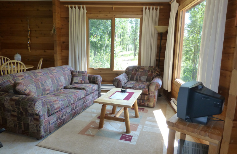 Living Room of Bear Cabin at Mica Mountain Lodge