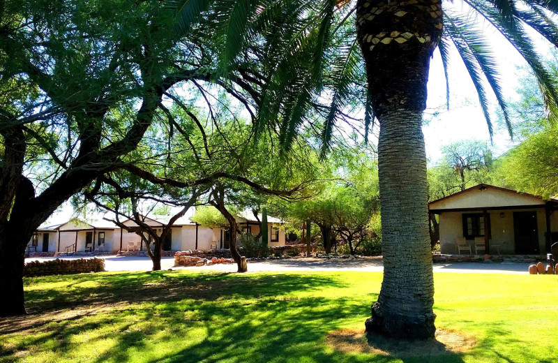 Exterior view of Saguaro Lake Guest Ranch.
