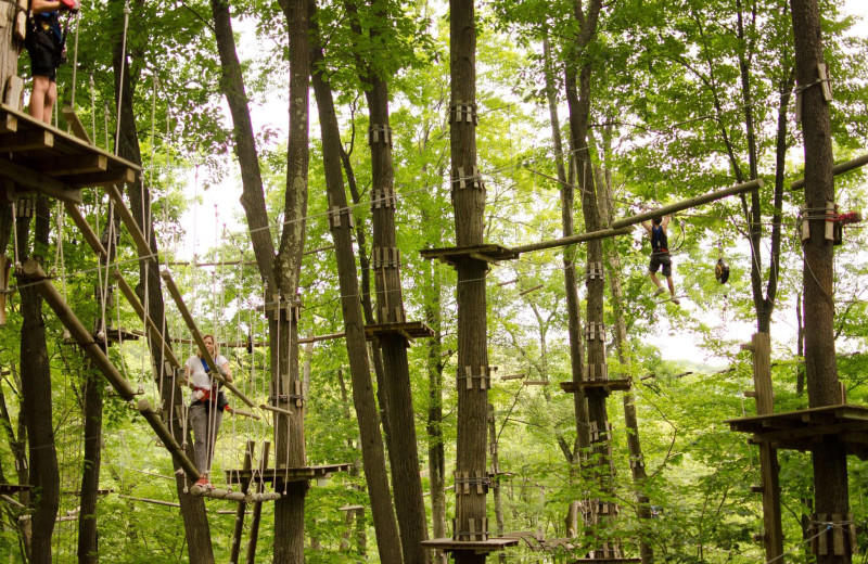 Rope course at Holiday Valley Resort.