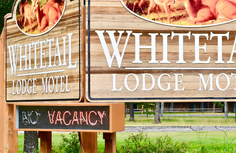 Welcome sign at Whitetail Lodge.