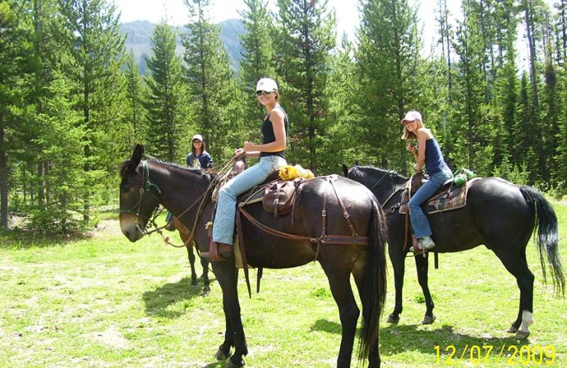 Horseback riding at Gentry River Ranch.