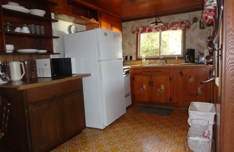 Cabin kitchen at Gypsy Villa Resort.
