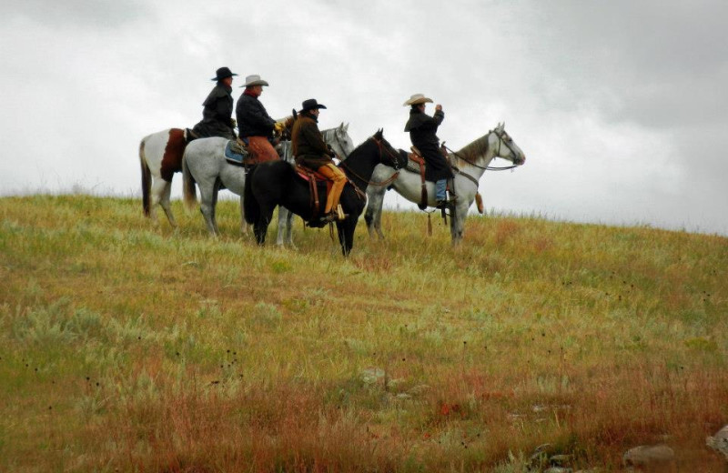 Amazing annual Custer Round Up