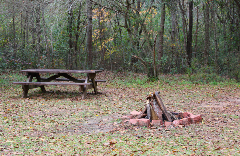 Guest picnic and fire area at Berry Creek Cabins.