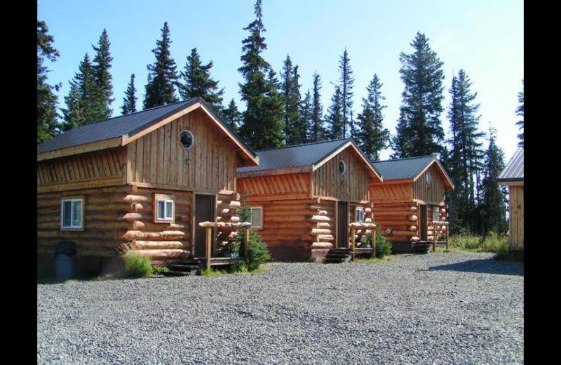 Cabins at Sleepy Bear Cabins.