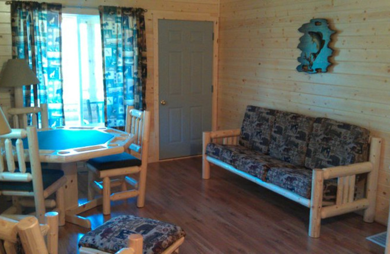 Cabin living area at Shady Roost Lodge.