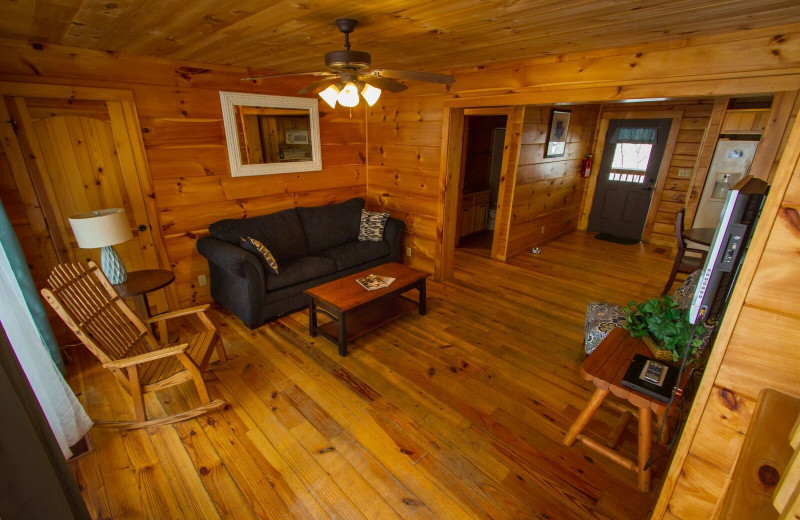Cabin living room at ACE Adventure Resort.