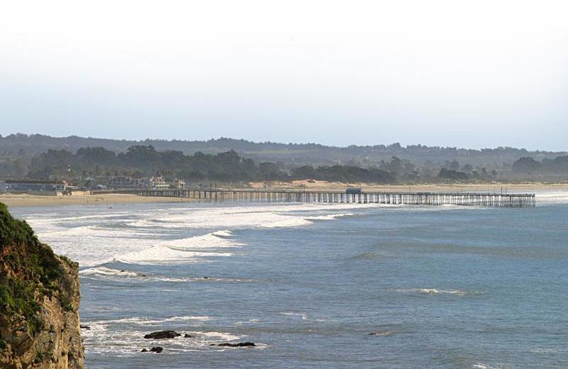 Coastline near Shelter Cove Lodge