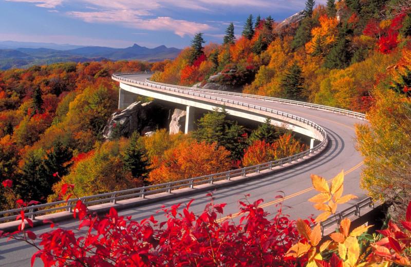 Fall colors at Old Creek Lodge.
