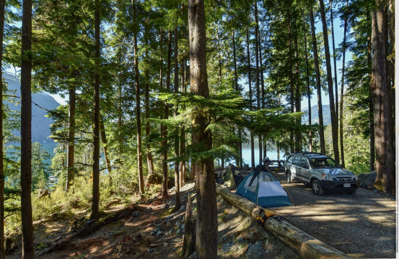 Campground at Nootka Marine Adventures.