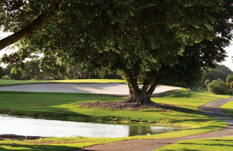 Golf Course at Longboat Key Club