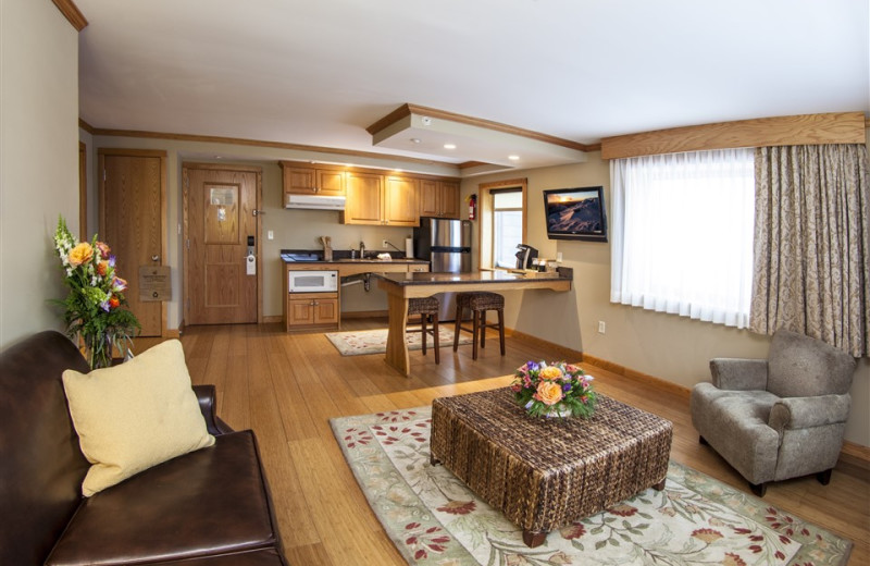 Table Top Suite with Kitchenette and Living Room