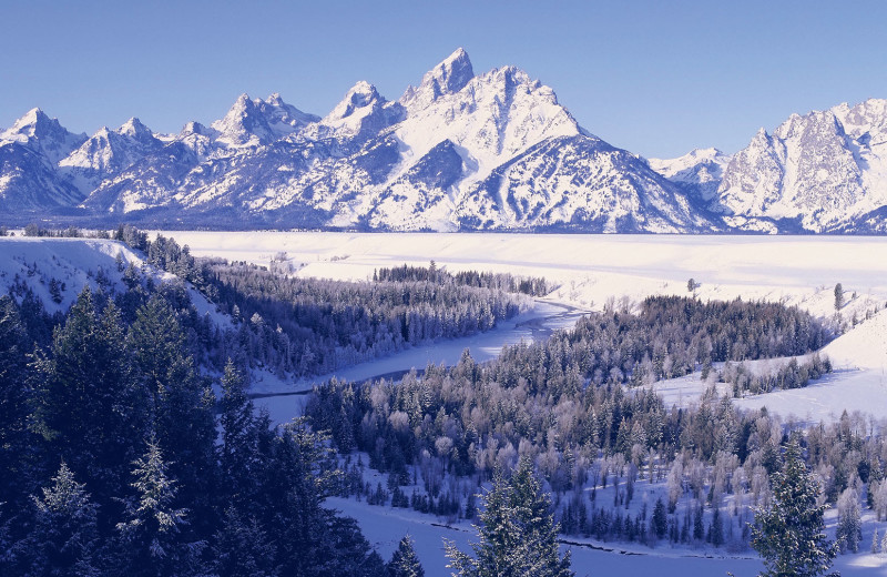 Scenic view at Jackson Hole Lodge.