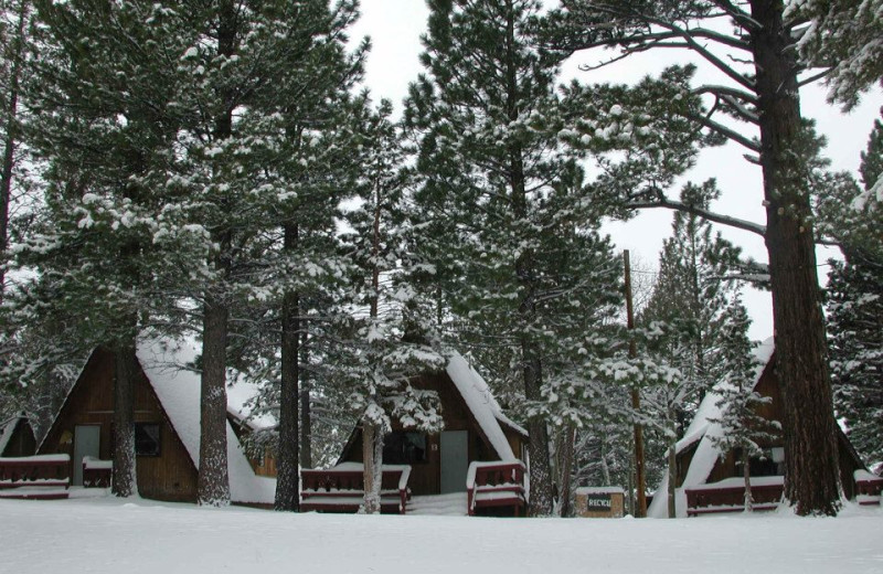 Chalets at Reverse Creek Lodge.