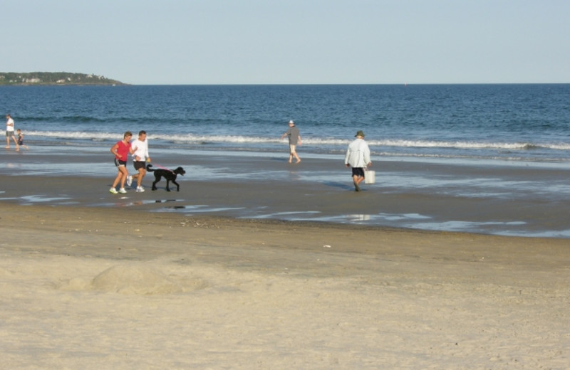 Pets welcome at Alouette Beach Resort.