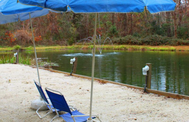 Beach at Berry Creek Cabins.