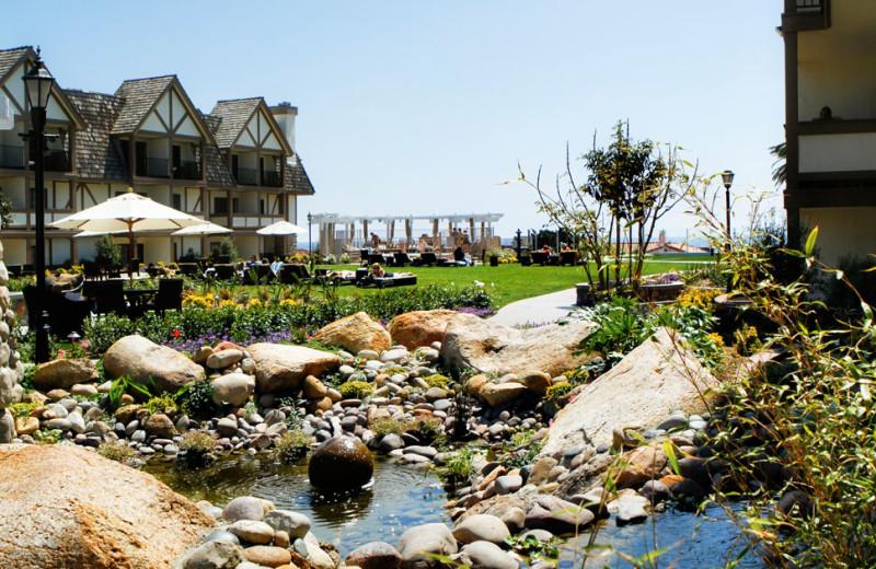 Resort Grounds at the Carlsbad Inn Beach Resort