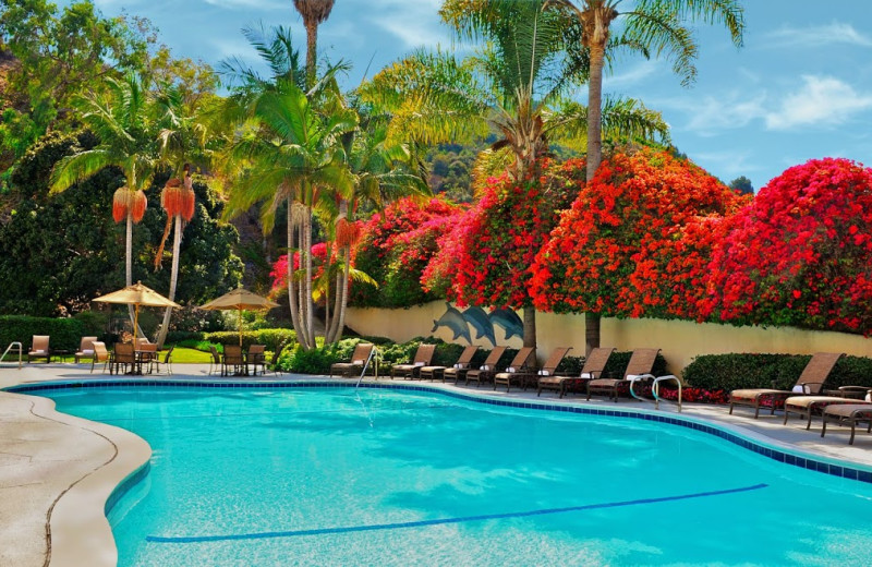 Outdoor pool at Sheraton San Diego Hotel, Mission Valley.