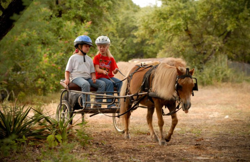 Going for a Ride at Sugar & Spice Ranch