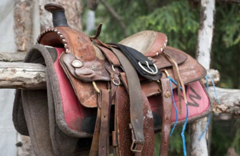Horse Amenities at Warner Guiding & Outfitting