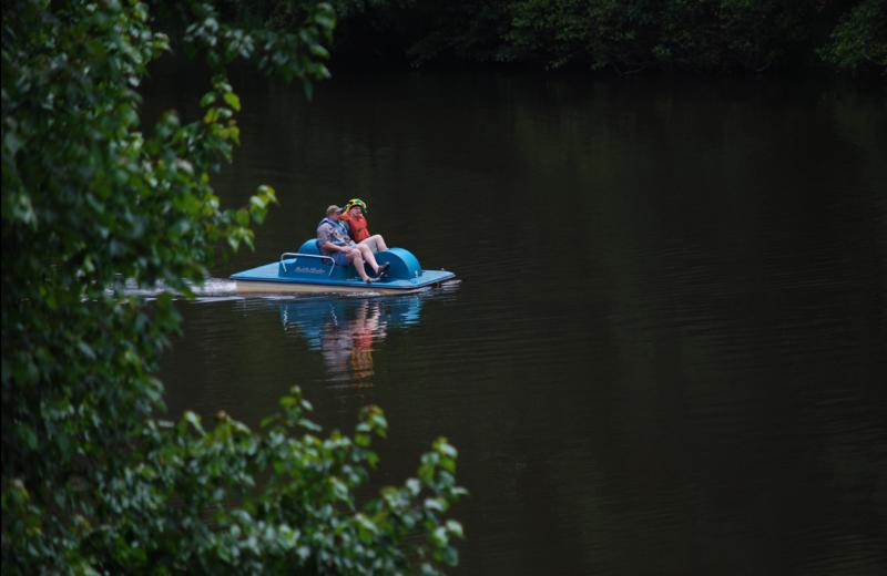 Peddle boat at Lake Ridge Resort.