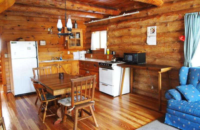 Cabin kitchen at Heston's Lodge.