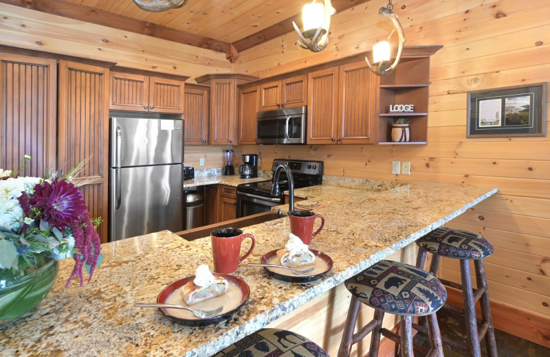 Guest kitchen at The Lodges at Cresthaven on Lake George.