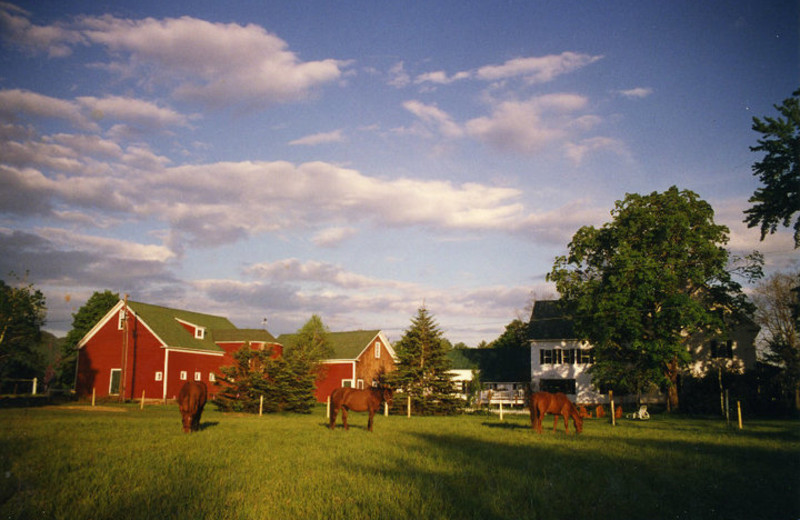 Exterior view of Farm by the River Bed & Breakfast.