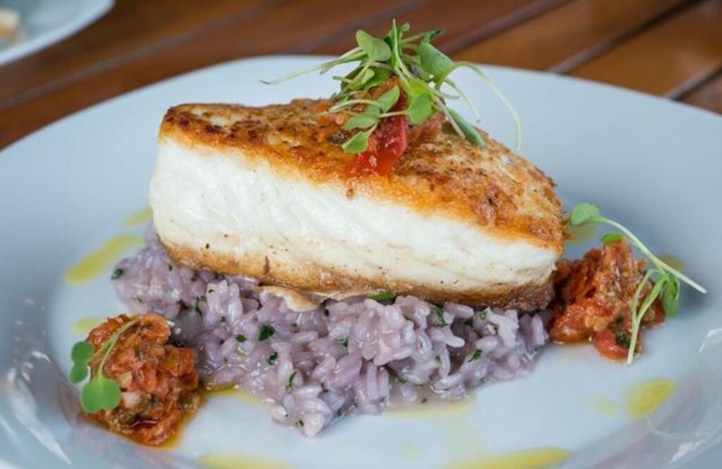 Dinner at Linekin Bay Resort.