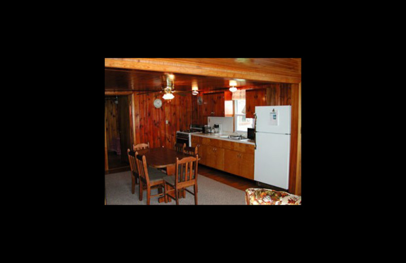 Cabin kitchen at Horseshoe Resort.