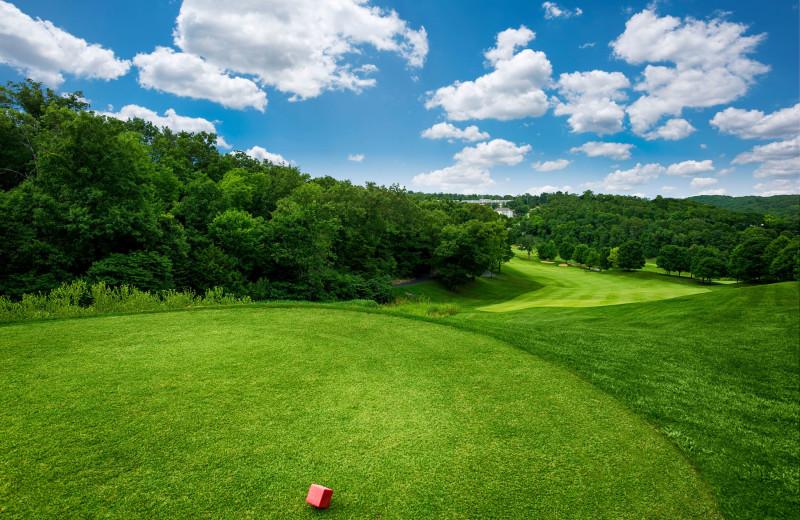 Golf at Thousand Hills Golf Resort.