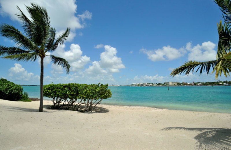 Beach at Vacation Homes of Key West.