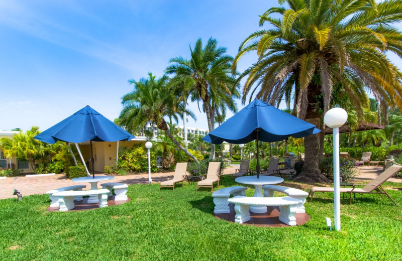 Picnic area at Tropical Shores Beach Resort.