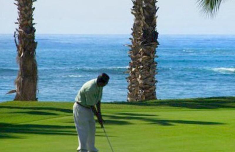 Golfing at Hola Grand Faro Los Cabos