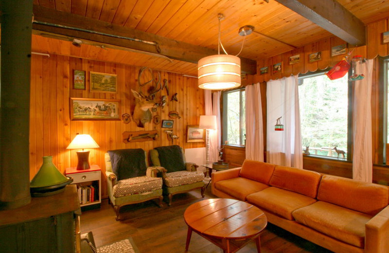 Cabin living rooms at Mt. Baker Lodging.