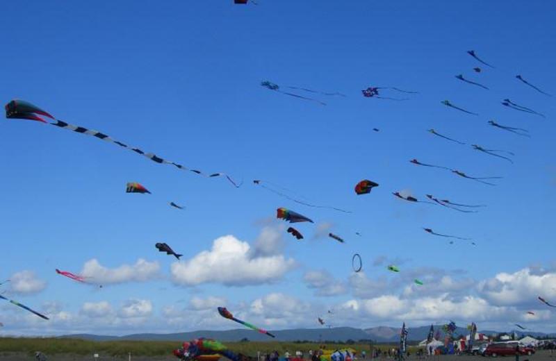 International Kite Festival on beach at Oceanfront Getaways.