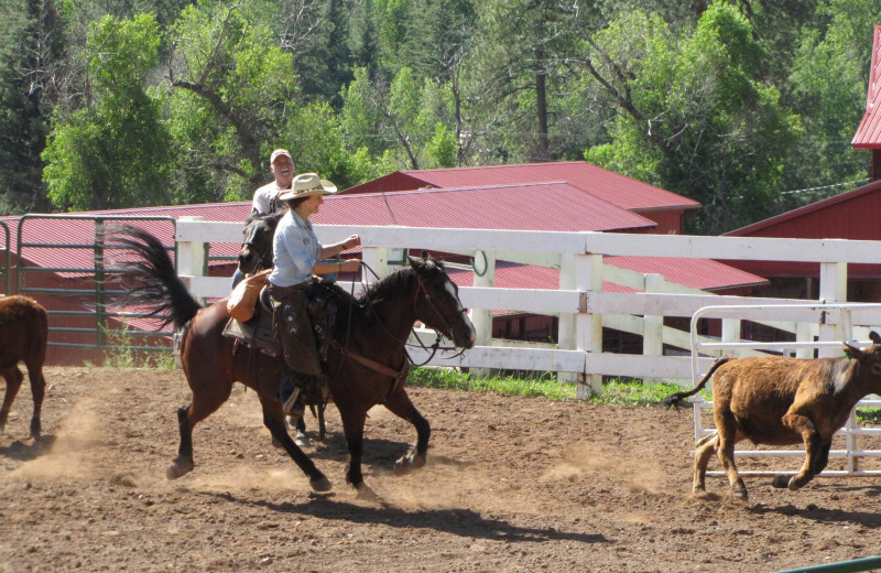 Horseback riding at Colorado Trails Ranch.