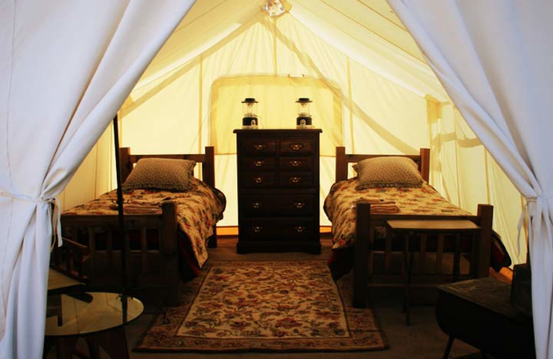 Two Bed Tent at Moab Under Canvas