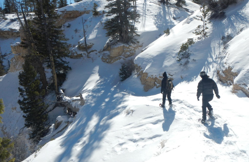 Snowshoeing near Stone Canyon Inn.