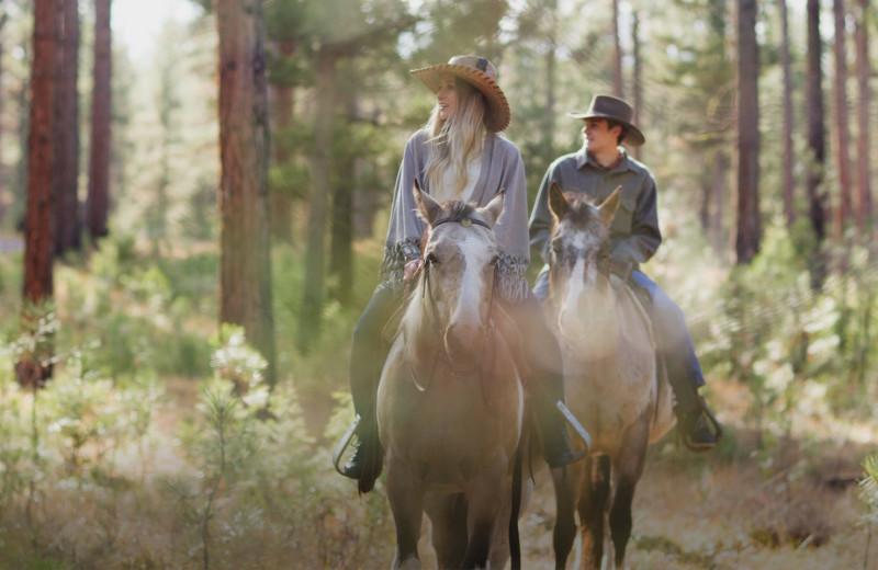 Horseback riding at The Green O.