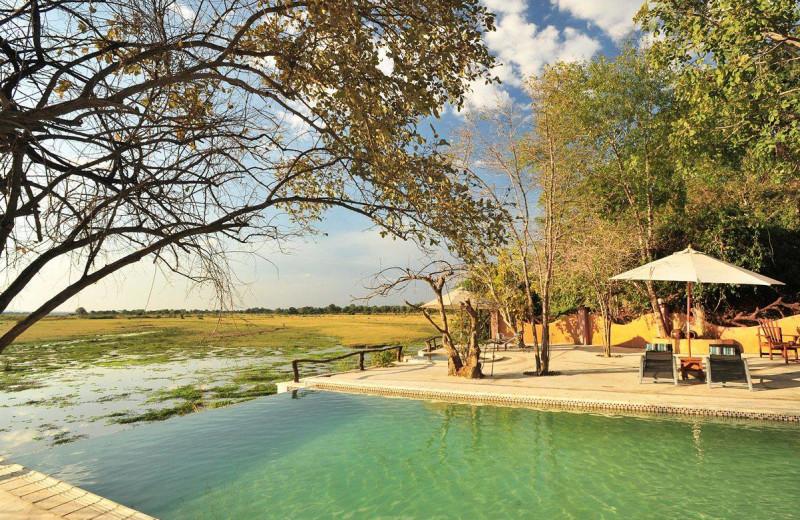 Outdoor pool at Kafunta River Lodge.