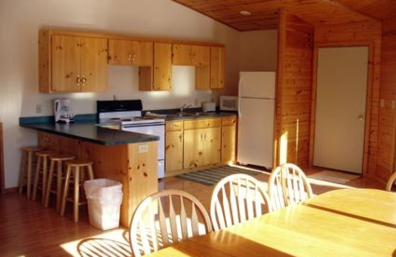Cottage kitchen at Bug-Bee Hive Resort.