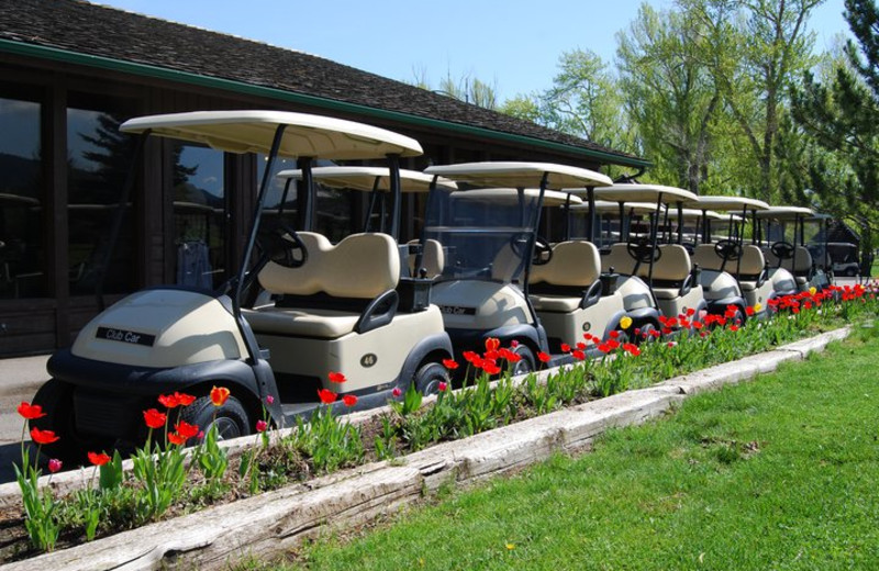 Golf carts at Fairmont Hot Springs Resort.
