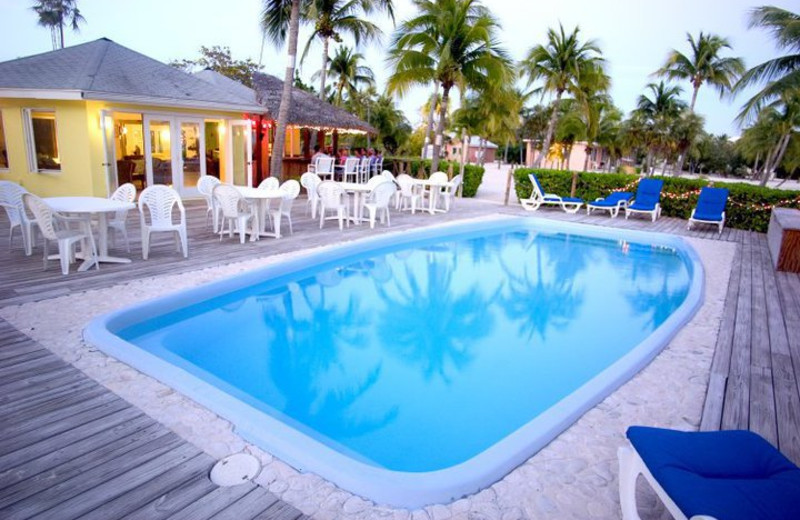 Outdoor pool at Southern Cross Club & Dive Resort.