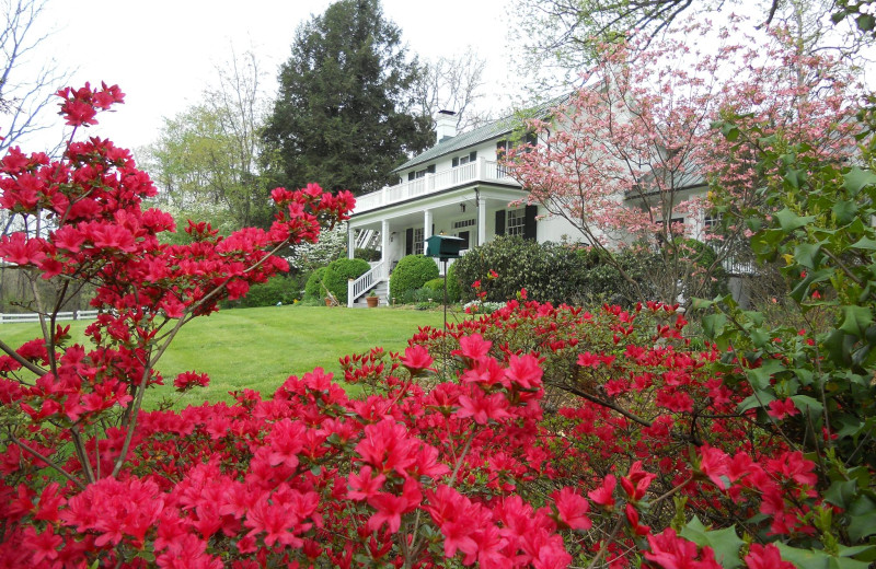 Spring at Inn at Monticello.