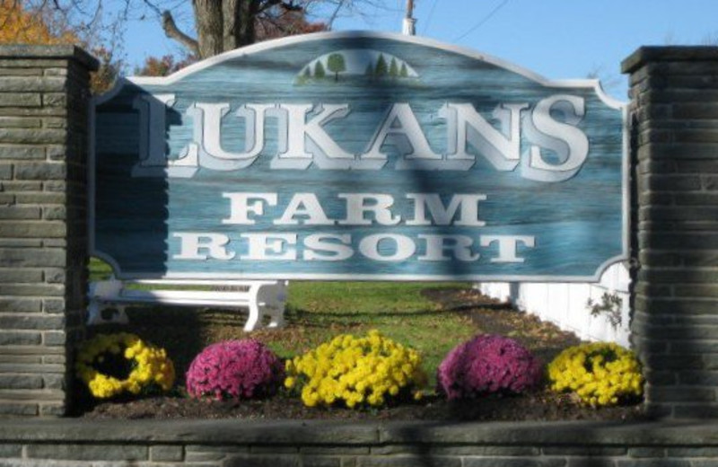 Welcome to Lukan's Farm Resort
