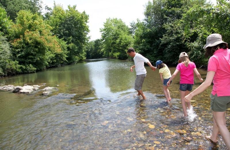 Family crossing stream at Carolina Mornings.