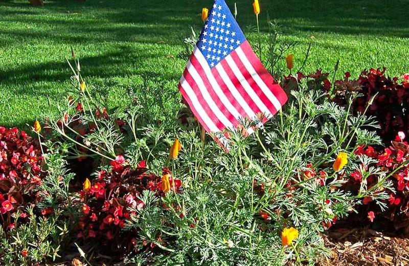 Garden at 4 Seasons Inn.